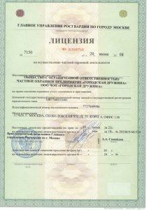 """ЧОП """"Городская дружина"""""""