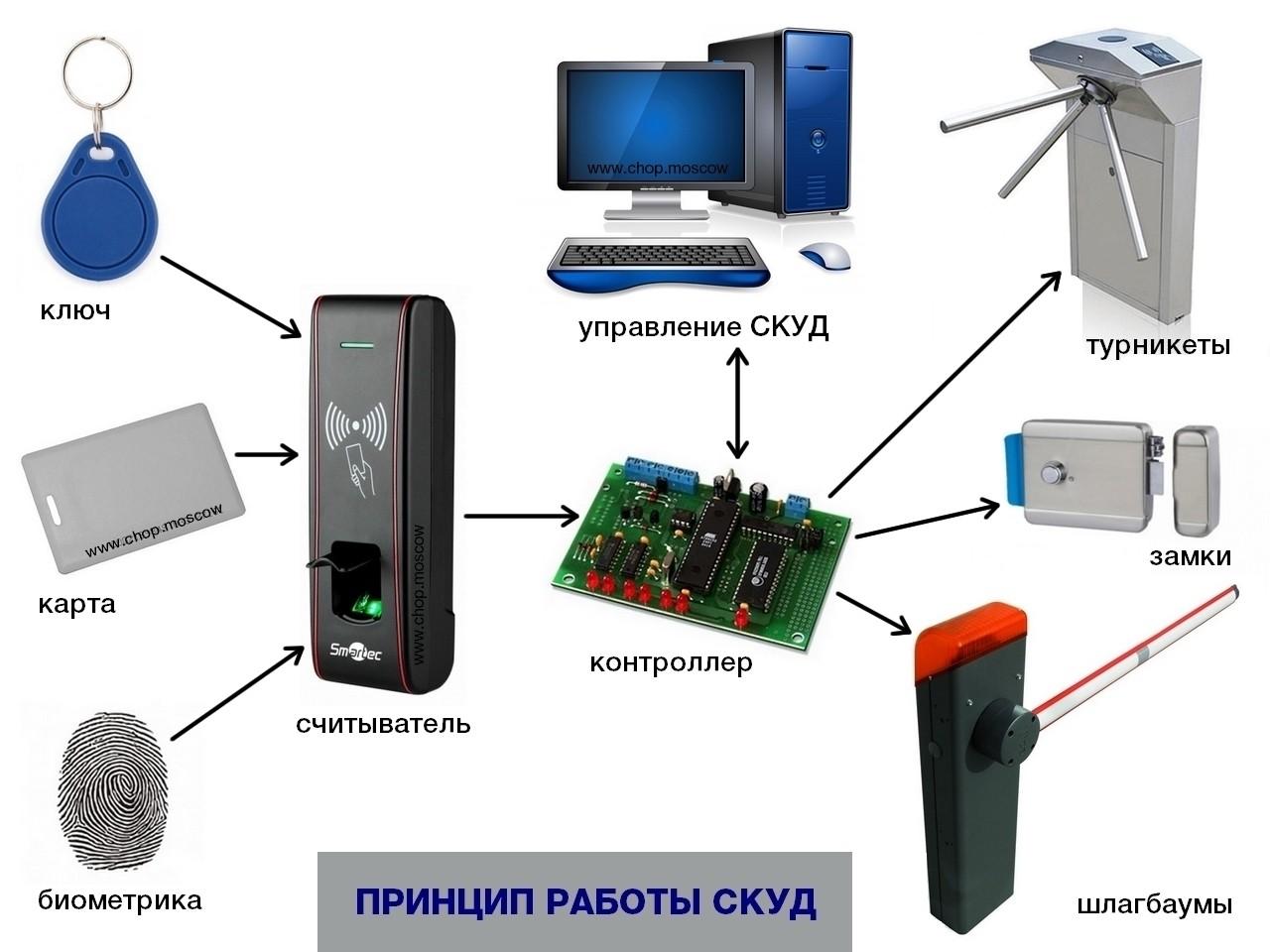 Что такое СКУД? Разбираемся в системе контроля и управления доступом!