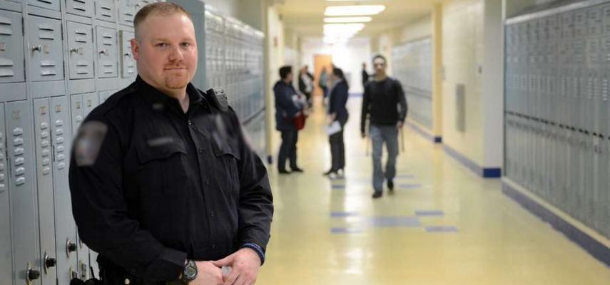 Особенности организации охраны школ