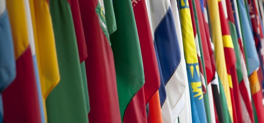 Специфика охраны консульств, посольств и дипломатических представительств